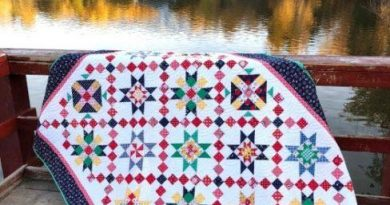 Free Sampler Quilt Tutorial 1 488x650 1