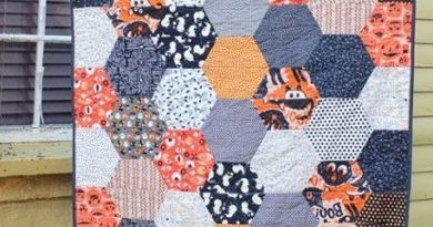 Large Hexagon Quilt Tutorial 433x650 1